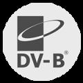 Logo_dv-b